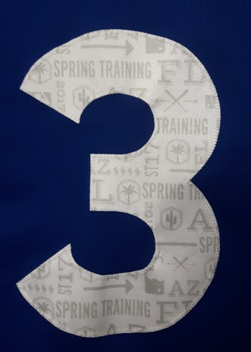 Photo of Authenticated Game Used 2017 Spring Training Jersey - #3 Ezequiel Carrera (March 22 vs Detroit)