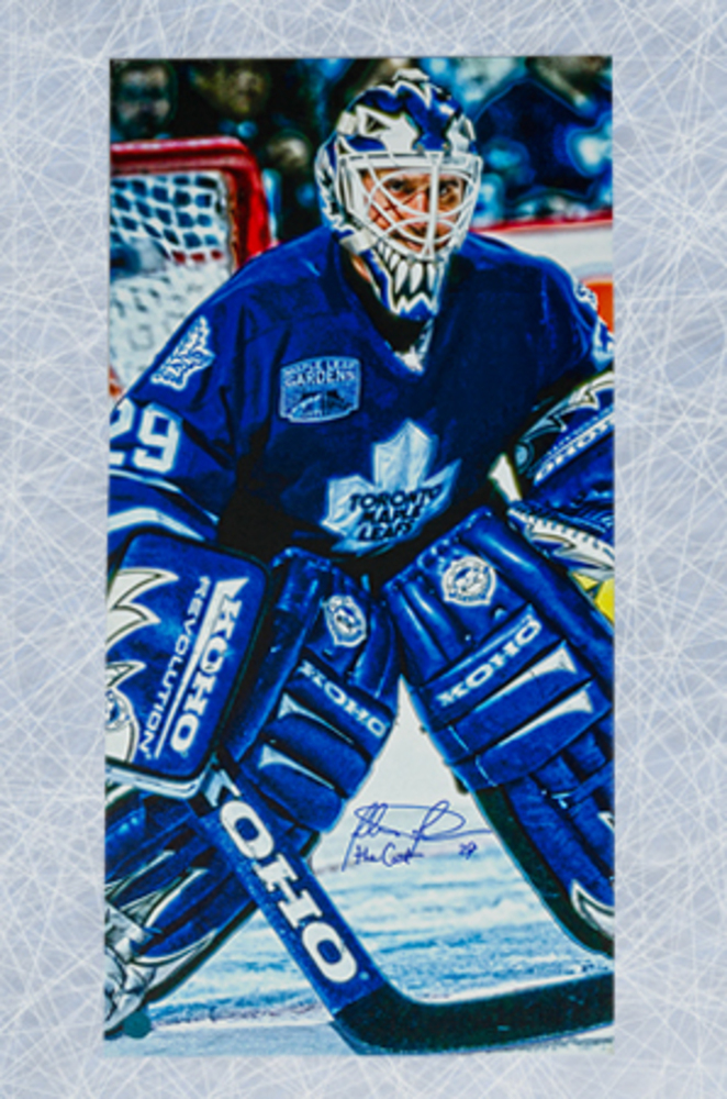 Felix Potvin Toronto Maple Leafs Autographed 14x28 Art Canvas
