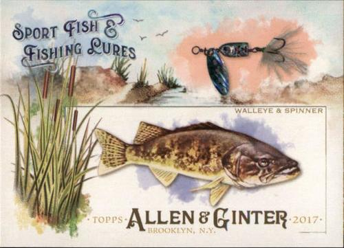 Photo of 2017 Topps Allen and Ginter Sport Fish and Fishing Lures #SFL2 Walleye