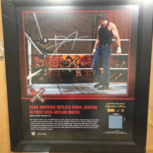 Photo of Dean Ambrose SIGNED Extreme Rules 2016 15 x 17 Framed Ring Canvas Photo Collage
