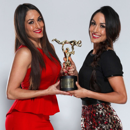 Bella Twins SIGNED WWE Replica Slammy Award