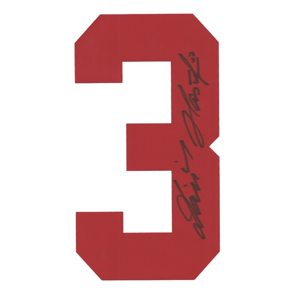 Dominik Hasek Autographed Detroit Red Wings Twill Jersey Number