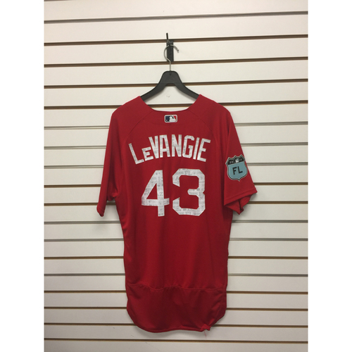 Photo of Dana Levangie Team-Issued 2017 Spring Training Jersey