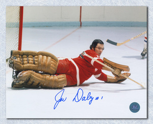Joe Daley Detroit Red Wings Autographed Goalie Action 8x10 Photo