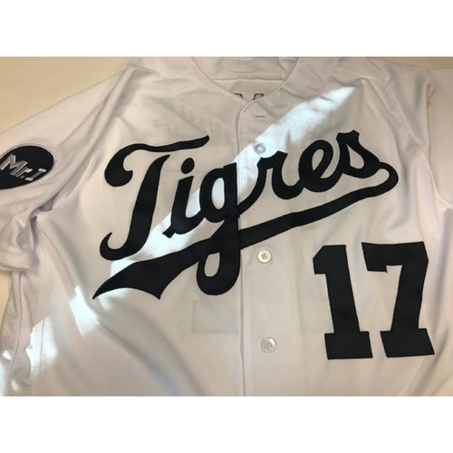 Photo of Game-Used Fiesta Tigres Jersey: Andrew Romine