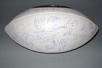 49ERS - 2015 MULTI SIGNED PANEL BALL (OVER 40 SIGNATURES INCLUDING REGGIE BUSH BLAINE GABBERT VERNON DAVIS QUINTON PATTON GARRETT CELEK TORREY SMITH VANCE MCDONALD)