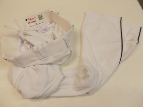 Photo of JD Martinez Home Baseball Pants