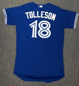 Toronto Blue Jays Authenticated Game Used 2014 Jersey - #18 Steve Tolleson. Tolleson went 0-for-1.