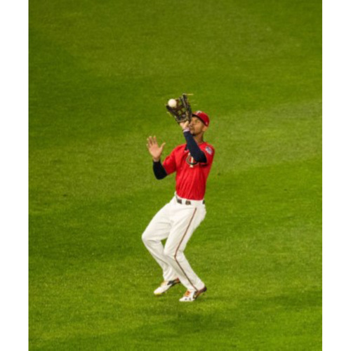 Photo of 2017 Twins Favorite Things Auction: Unique Experience   ***  Catch with Byron Buxton***