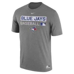 Toronto Blue Jays Authentic Collection Legend Team Issue T-Shirt Grey by Nike
