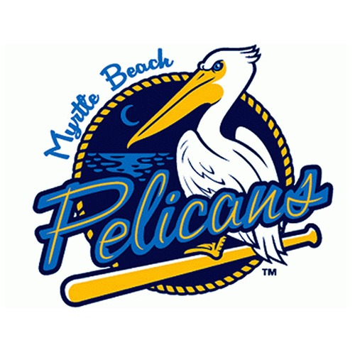 UMPS CARE AUCTION: Myrtle Beach Pelicans (Rangers A Adv) 8 Reserve Box Tickets Plus
