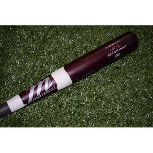 Photo of Game-Used Broken Bat: Tampa Bay Rays at Cleveland Indians