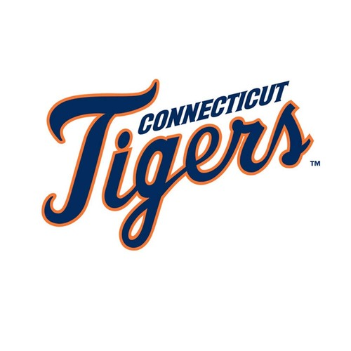 Photo of UMPS CARE AUCTION: Connecticut Tigers (A SS) Luxury Suite for 20