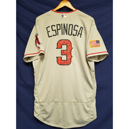 Photo of Danny Espinosa Game-Used Road Jersey - 7/4/2017
