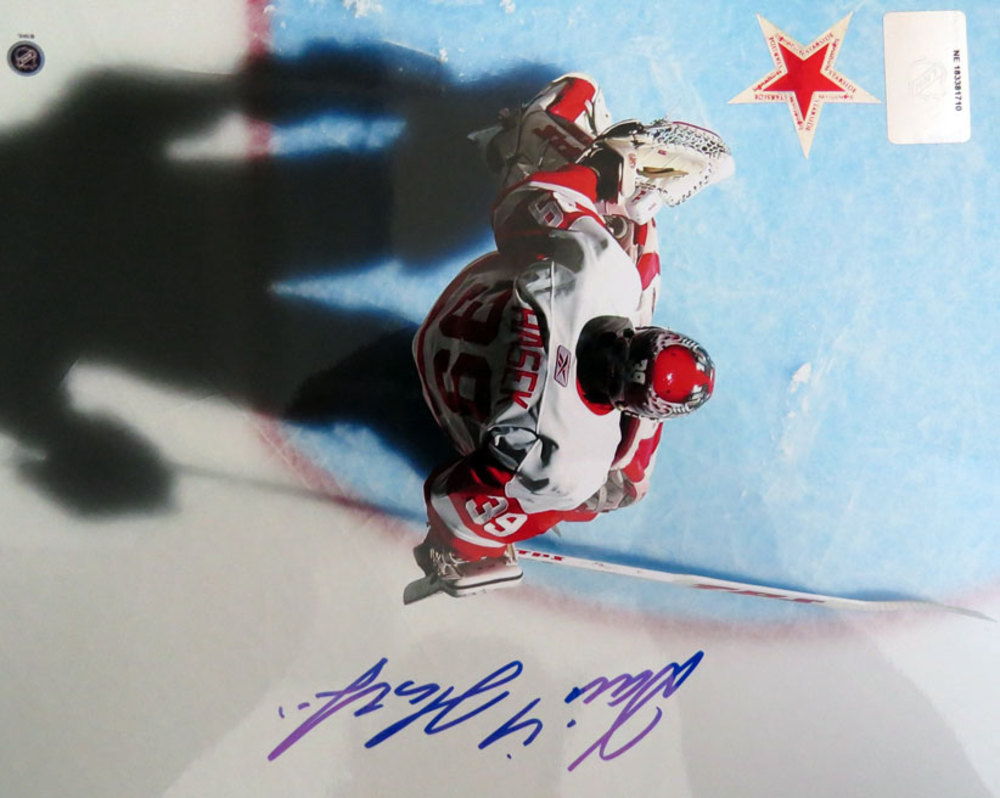 Dominik Hasek Signed Detroit Red Wings SHADOW 16x20