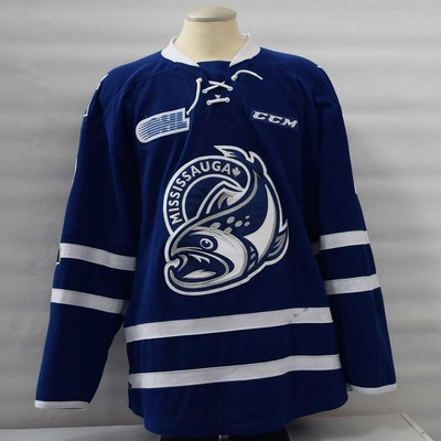 Michael Little Blue 2017-18 Game Worn Jersey