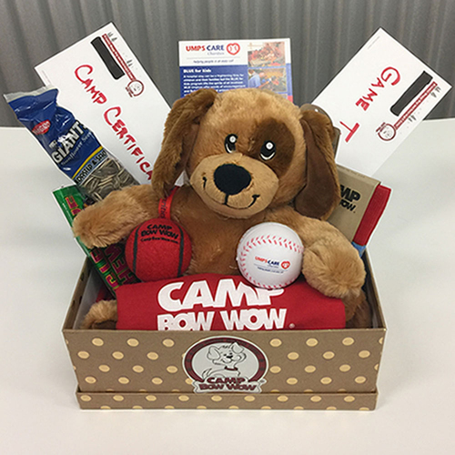 Photo of UMPS CARE AUCTION: Camp Bow Wow San Clemente, CA Gift Basket and Anaheim Angels Tickets for 4