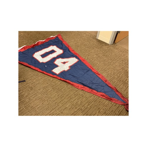 Photo of Minnesota Twins Stadium Flag - 2004 Central Division Champions Flag