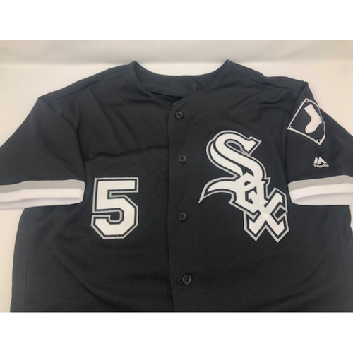 Photo of Yolmer Sanchez Game-Used Alternate Jersey