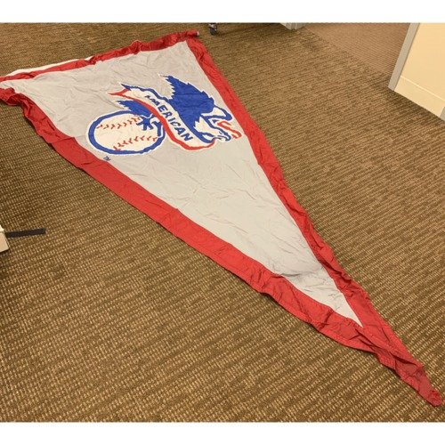 Photo of Minnesota Twins Stadium Flag - American League Pennant