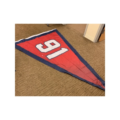 Photo of Minnesota Twins Stadium Flag - 1991 World Series Champions Flag