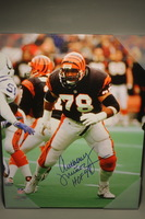 HOF - BENGALS ANTHONY MUNOZ SIGNED 16X20 CANVAS PRINT