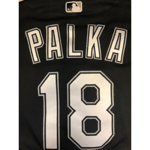 Photo of Daniel Palka Team-Issued 2019 Spring Training Jersey (not authenticated)