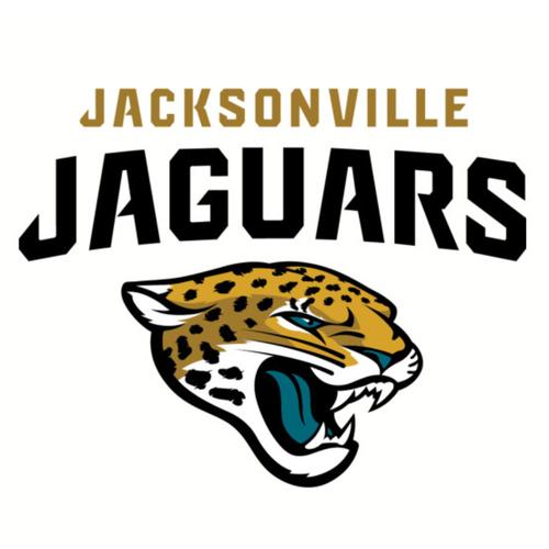 Jacksonville Jaguars Experience