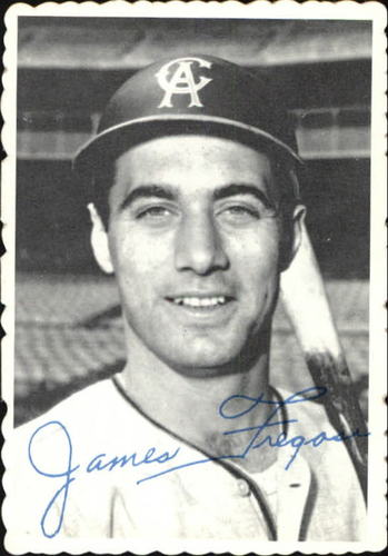 Photo of 1969 Topps Deckle Edge #5 Jim Fregosi
