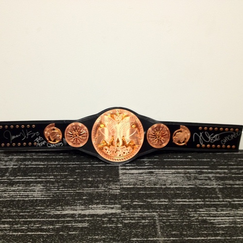 The Usos SIGNED WWE Tag Team Championship Replica Title