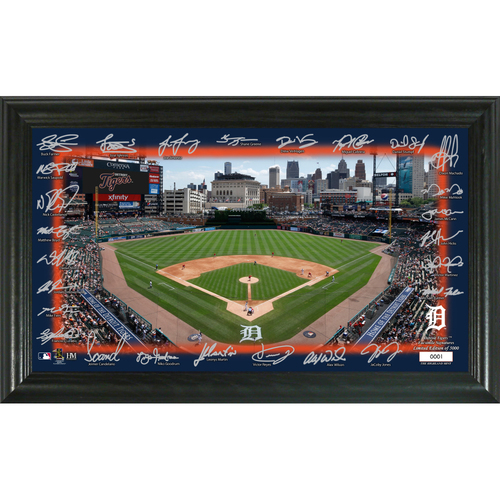 Photo of Detroit Tigers Signature Field Photo Frame