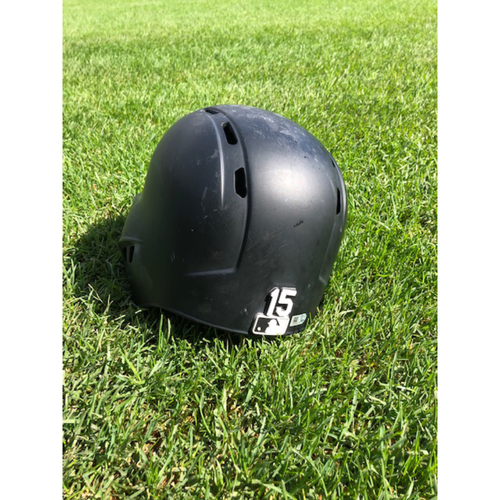 Adam Engel Game-Used Batting Helmet