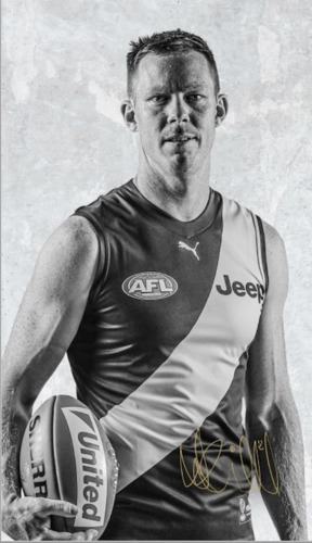 Photo of Mr. President Hanging Silk  - Riewoldt