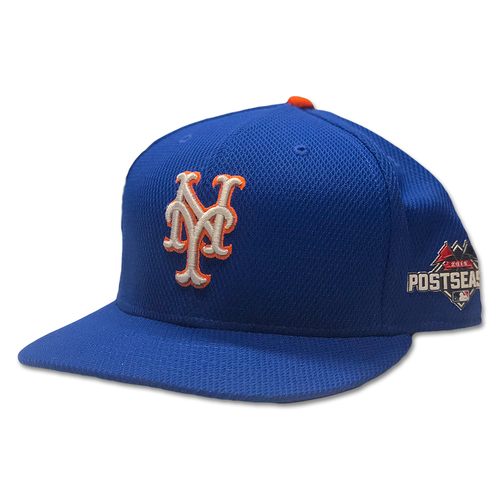 Photo of #4 Team Issued Blue Alt. Road 2015 Postseason Hat