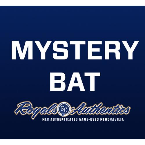 Photo of Mystery Bat