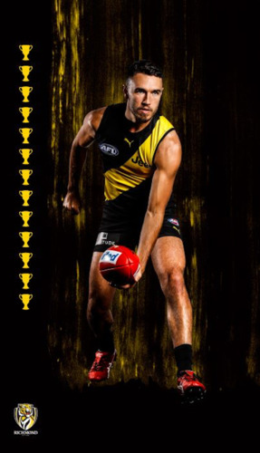 Photo of Hang It Up Player Silk - Edwards