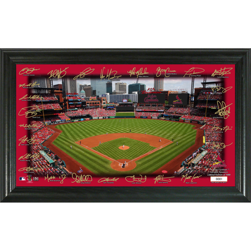 Photo of St. Louis Cardinals Signature Field Photo Frame