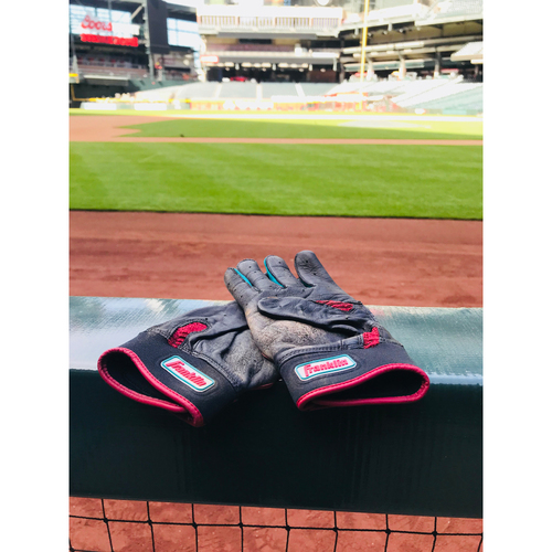 Photo of Team-Issued Batting Gloves-DP6