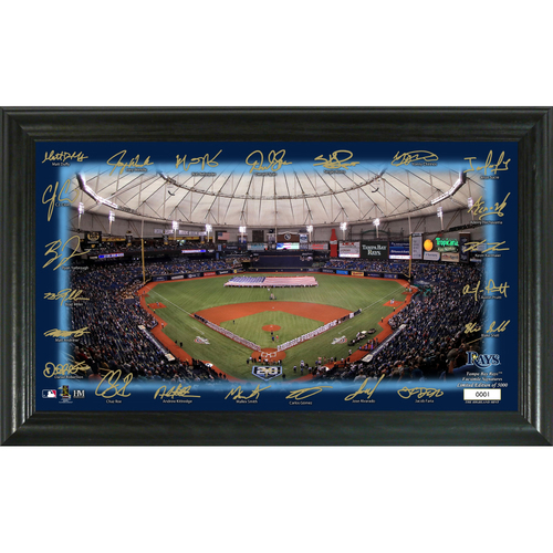 Photo of Tampa Bay Rays Signature Field Photo Frame