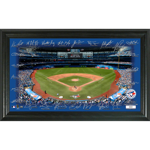Photo of Toronto Blue Jays Signature Field Photo Frame