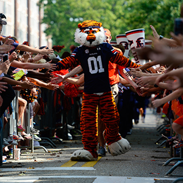 "Photo of Football Gameday ""Tiger Walk"" Experience Sept. 2, 2017 vs Georgia Southern"