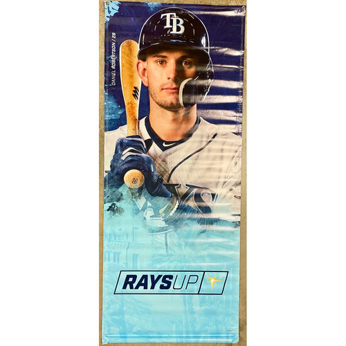 Photo of Rays Baseball Foundation: Team Issued Banner - Daniel Robertson