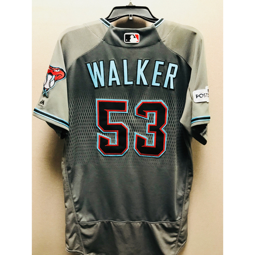 Photo of 2017 Game-Used NLDS Christian Walker Jersey