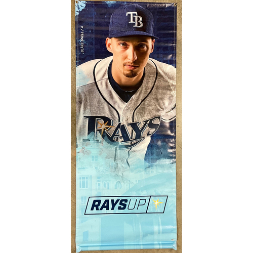 Photo of Rays Baseball Foundation: Team Issued Banner - Blake Snell
