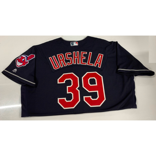 Photo of Gio Urshela Team Issued Alternate Road Jersey