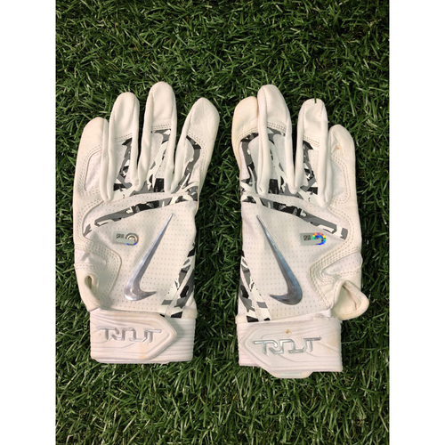 Photo of Team Issued Nike Batting Gloves