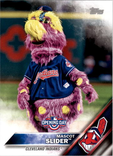 Photo of 2016 Topps Opening Day Mascots #M12 Slider