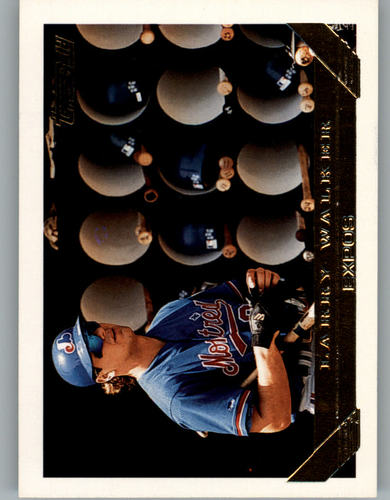 Photo of 1993 Topps Gold #95 Larry Walker