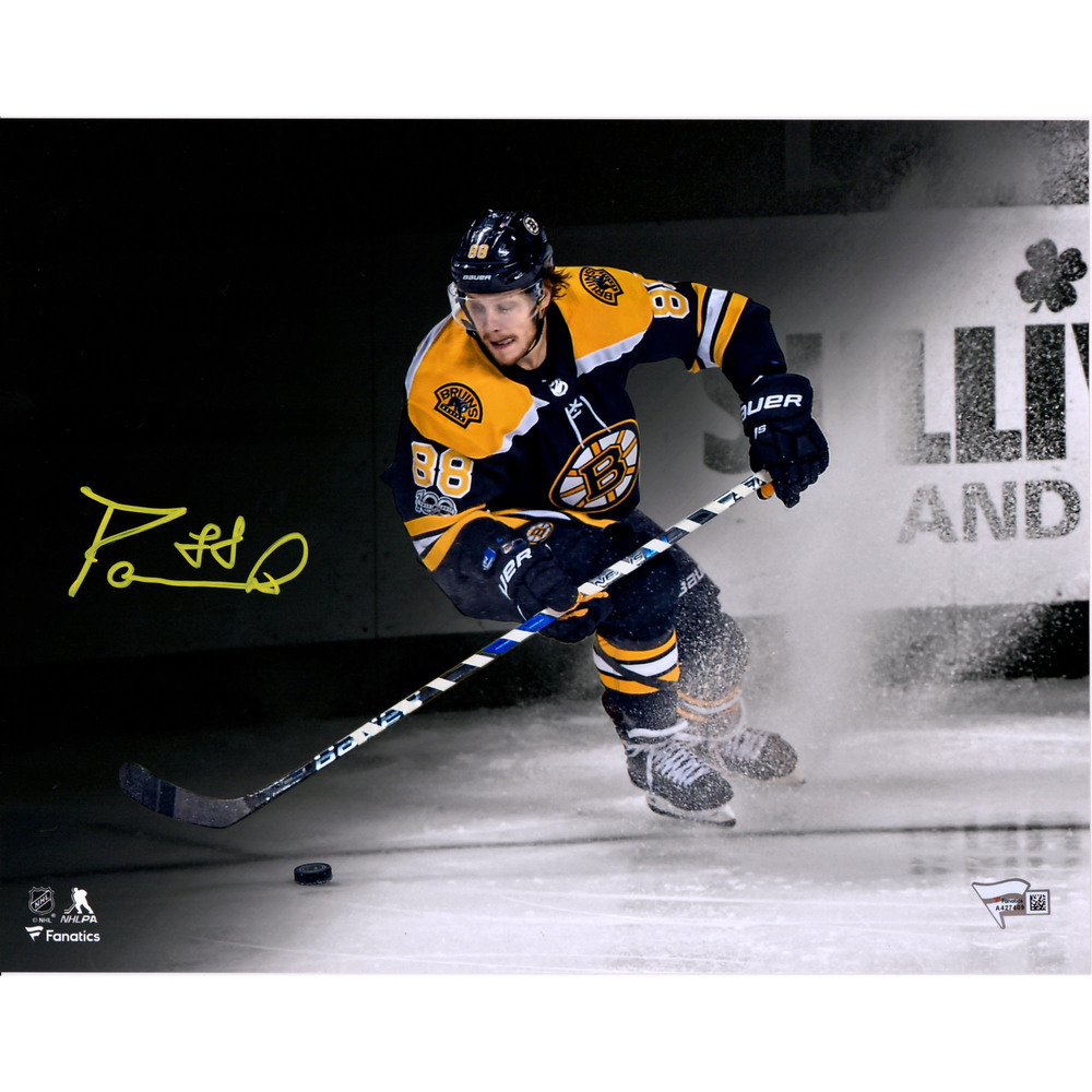 David Pastrnak Boston Bruins Autographed 11