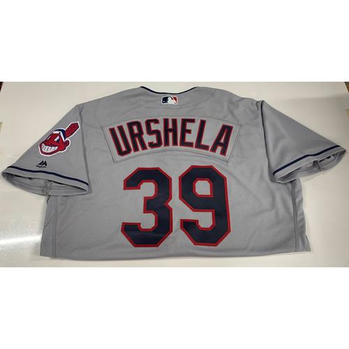Photo of Gio Urshela Team Issued Road Jersey
